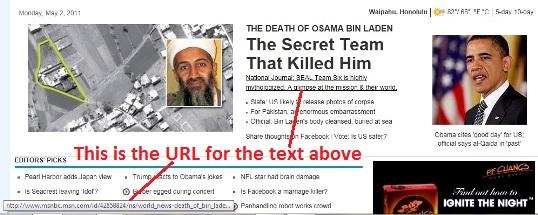 osama bin laden death news
